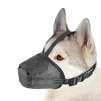 Amazon.com: Lepark Bozal de malla de nailon para perro con ...