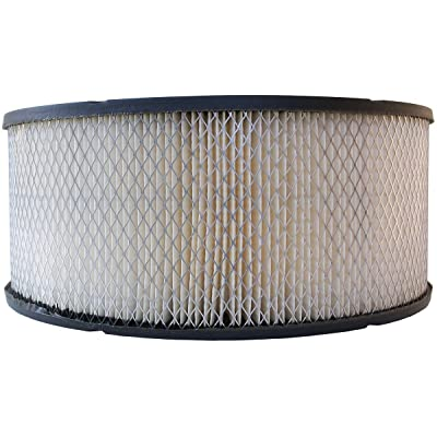 Luber-finer LAF388 Heavy Duty Air Filter: Automotive