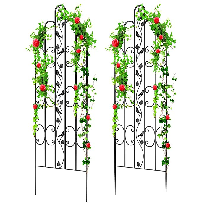 """Amagabeli 2 Pack Large Garden Trellis for Climbing Plants 71"""" x 21"""" Heavy Duty Rustproof Iron Plant Trellis for Potted Plants Support Tall Wall Metal Trellis for Rose Vines Vegetables Cucumber, Black"""