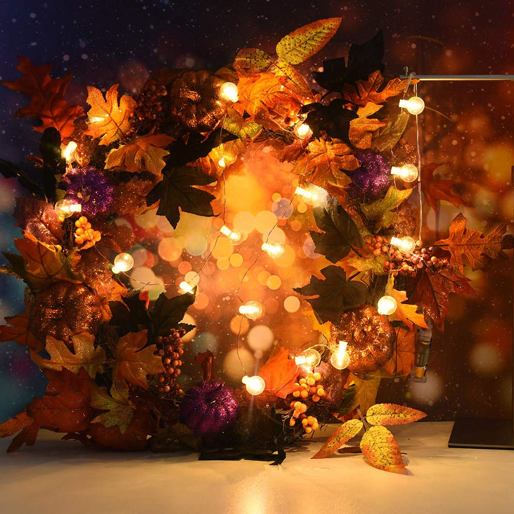 Amazon.com: Leoy88 Led Copper Wire String Halloween Christmas Lights ...