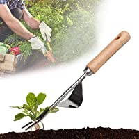 ASSDITED Onkruidsteker voor in de tuin, handmatige wortel, roestvrij staal, onkruidjager, tuinieren, vork met…