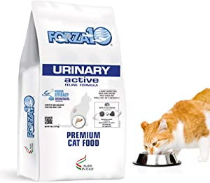Forza10 Active Urinary Dry Cat Food, Cat Food Dry for Adult Cats, Helps Improve Urinary Tract and Urinary Issues, Fish Flavor Cat Dry Food, 4 Pound Bag