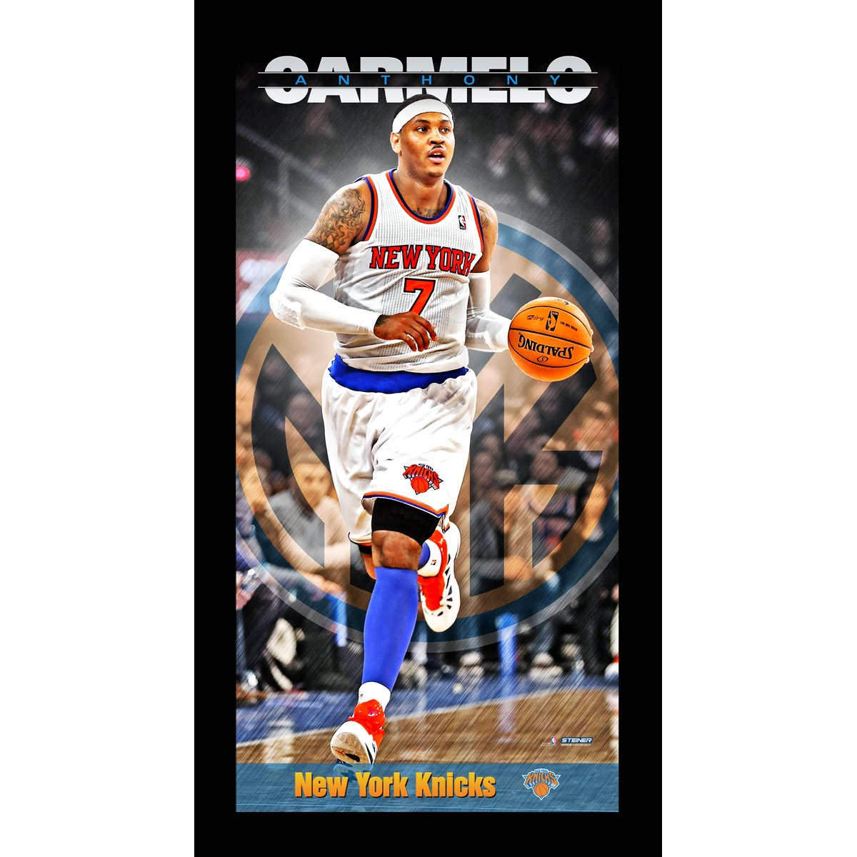 NBA New York Knicks Carmelo Anthony Player Profile Wall Art 9.5x19 Framed Photo