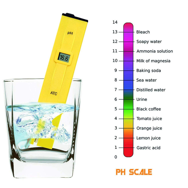 Calidad del Agua Medidor de Prueba TDS Ph CE Temperatura 4 en 1 Set: Amazon.es: Amazon.es