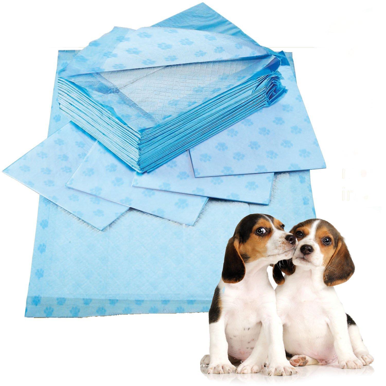 Prime Paws Taille XL 60x 90cm parfumée Puppy Pads d'entraînement pour toilettes Wee