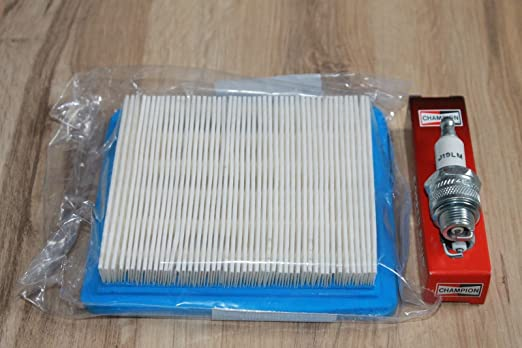 Lawnmowers Parts Mantenimiento Kit de Limpieza para Briggs ...