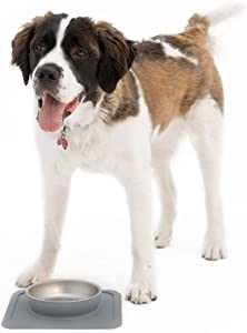 Ono Great Bowl Food & Water Single Feeder - Medium to Large Pets No Spill Non Skid Silicone Mat & Stainless Steel Bowl for Dogs or Cats