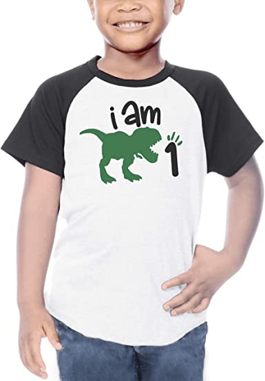 AMZTM 1st Birthday Girl T-Shirt Dinosaur Party B-Day Themed Tee Gift for Baby