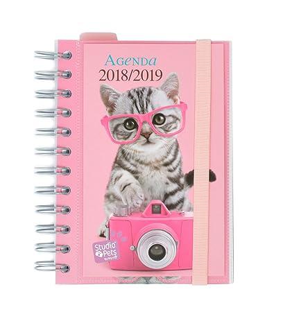 Grupo Erik Editores Studio Pets - Agenda escolar en español con diseño gato, 11.4 x 16 cm