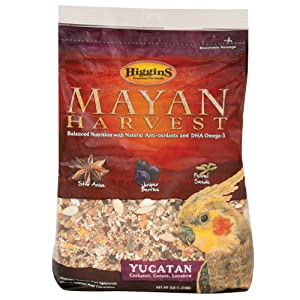Higgins Mayan Harvest Yucatan Food Mix