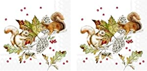 Squirrels and Berries 3-Ply Paper Cocktail Napkins 40-Count, Autumn Fall Decor Barware Beverage Serviettes