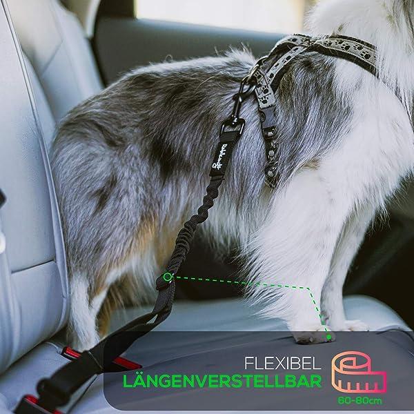Hundegurt-fürs-Auto