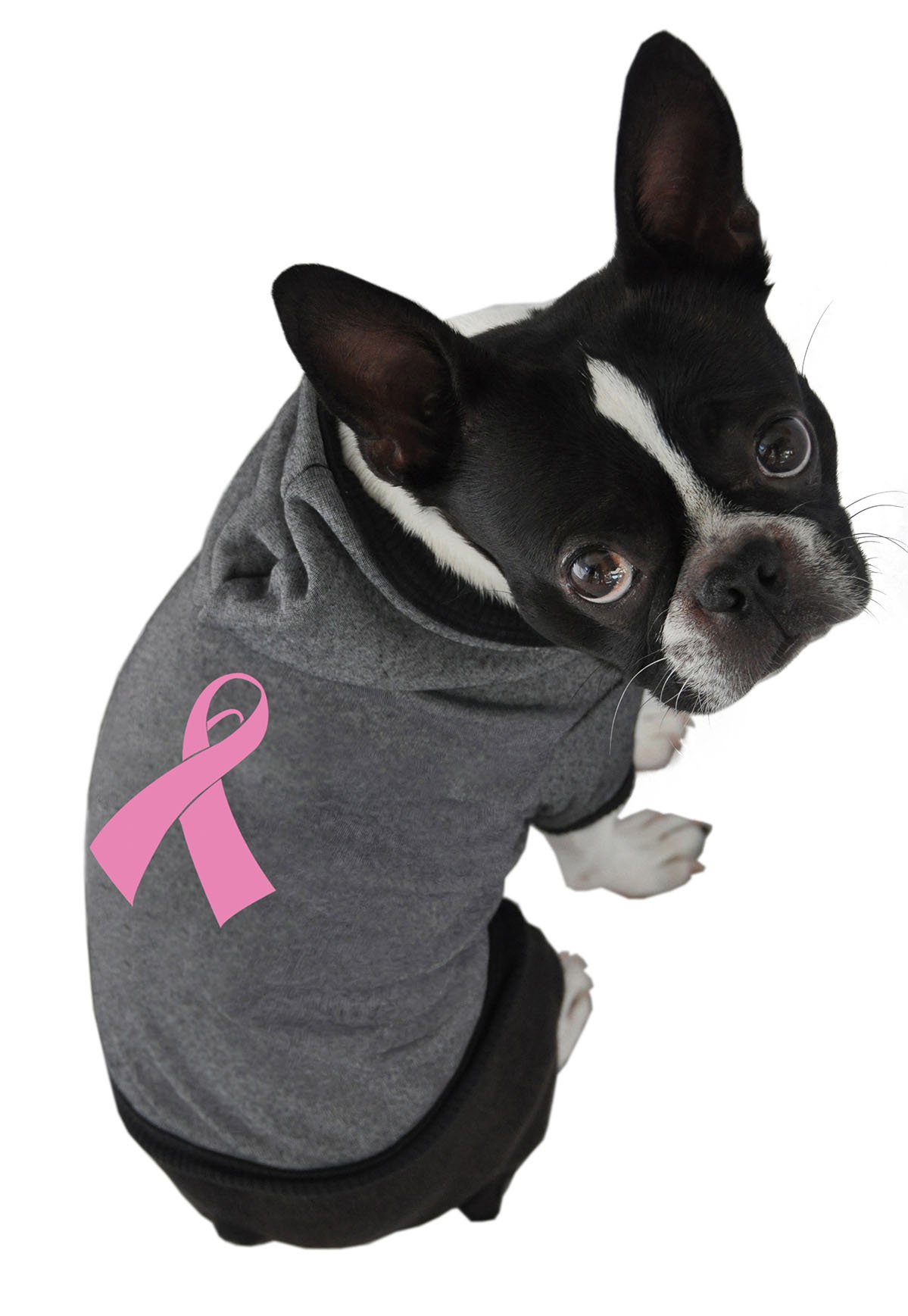 Ruff Ruff and Meow Dog Hoodie, Cancer Ribbon, Black, Extra-Large