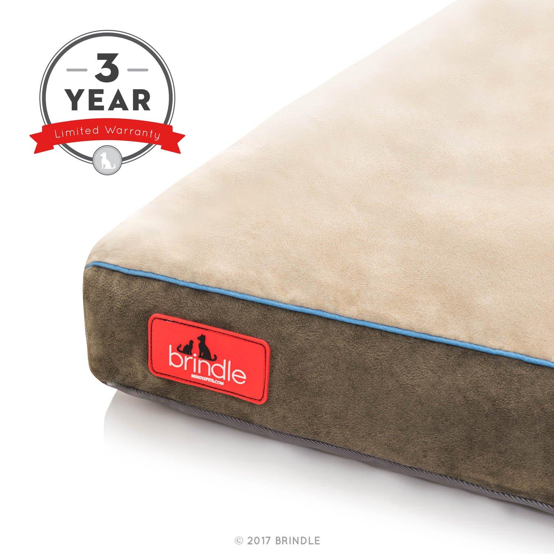Brindle Cama de Perro de Espuma de Memoria Suave con Cubierta Desprendible Lavable Khaki 56cm x 40cm: Amazon.es: Productos para mascotas