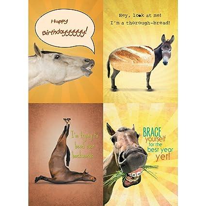 Amazon Tree Free Greetings Funny Horse Birthday Card