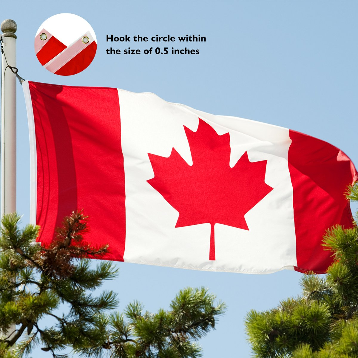 Canada Flag 5 x 3 FT/150 x 90 CM Polyester Flag Perfect for Outdoor & Indoor Large Canadian Flag