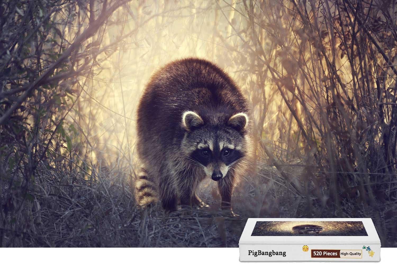 日本製 PigBangbang、手作り知育ゲーム難易度 In、ジグソーグル付きプレミアム木製 - - Raccoon Walk In The Grass - Bushes - 500ピースジグソーパズル (20.6 X 15.1インチ) B07FM7DLDP, エクサイトセキュリティ:06f39d8b --- 4x4.lt