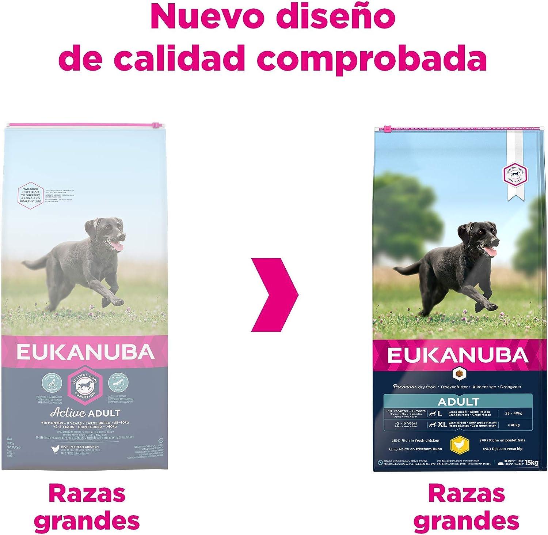 Eukanuba Alimento seco para perros adultos activos de raza grande, rico en pollo fresco 15 kg