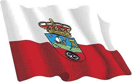 Artimagen Pegatina Bandera Ondeante Cantabria 80x60 mm.: Amazon.es: Coche y moto