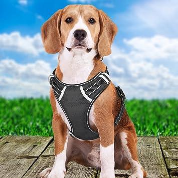 BOKAGOO: arnés para perro grande, sin tirones, arnés para mascotas ...