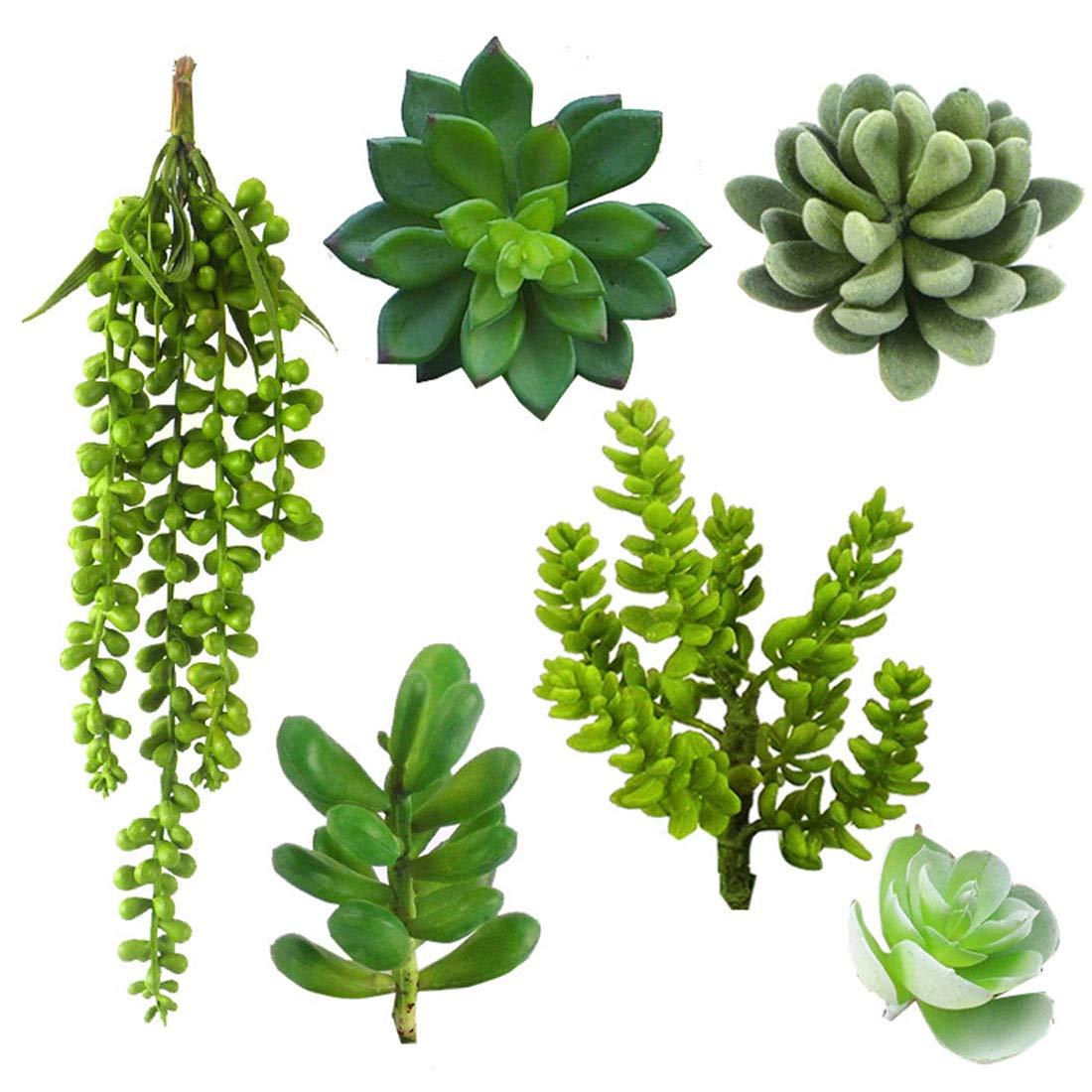 FREAHAP R 6 Piè ces Plantes Succulentes Fausses Plante Grasse Artificielle Dé coration Chembre Bureau Table Fenê tre