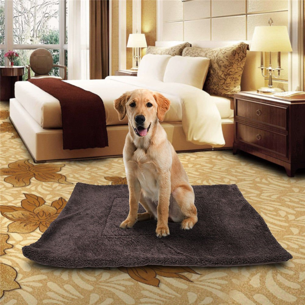 Amazon.com: Peterzon – Cama para mascotas para perro, gato ...