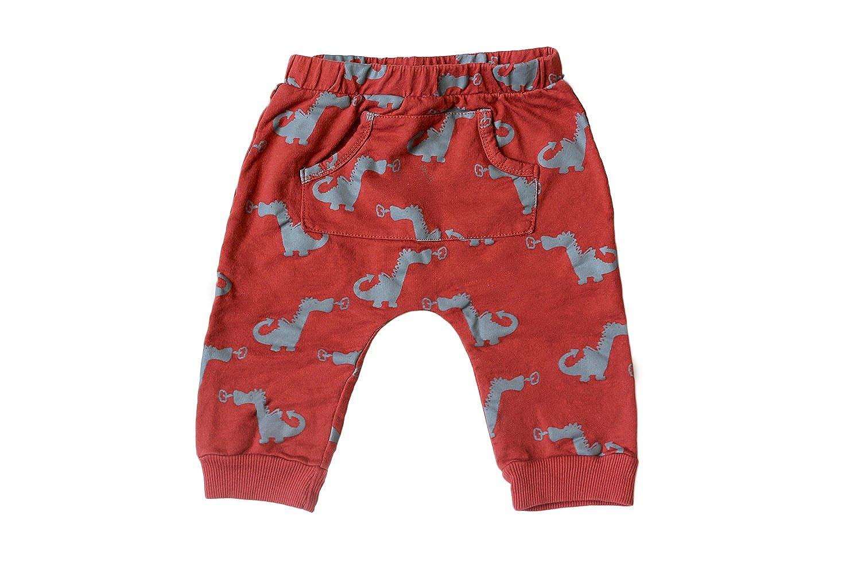 Wyldson Baby Boys Dragon Harem Pants