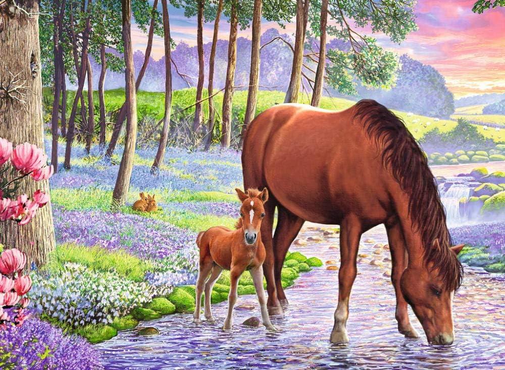 SFALHX Pintar por numeros Caballo Animal DIY Pintura al óleo Kit lienzos Niños y Principiantes acrilicas Cuadros Manualidades Decoracion Regalo 40x50 cm(Sin Marco)