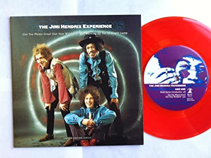 The Jimi Hendrix Experience Can You Please Crawl Out Your Window