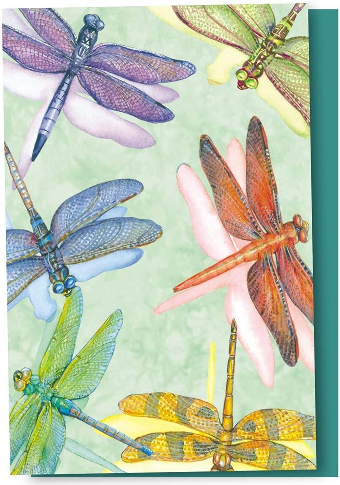 Tree-Free Greetings EcoNotes 12 Count Dragonflies All Occasion Notecard Set with Envelopes, 4 x 6 Inches (FS66500)