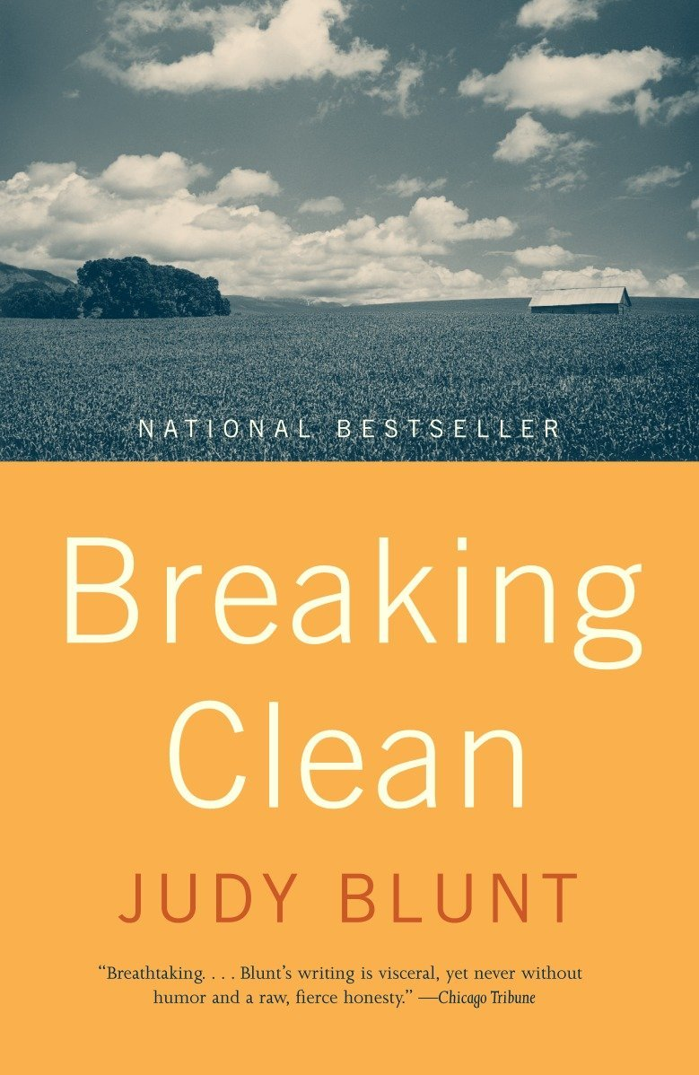 Breaking Clean pdf