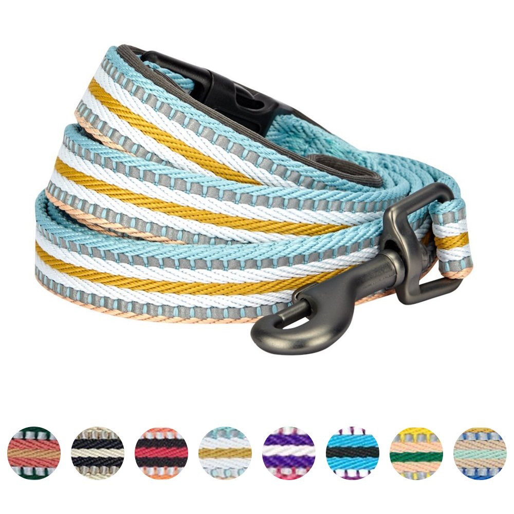 Blueberry Pet 3M Reflective Multi-colored Stripe Dog Leash with Soft & Comfortable Handle, 5 ft x 3/4, Ginger & Blue, Medium, Leashes for Dogs 5 ft x 3/4