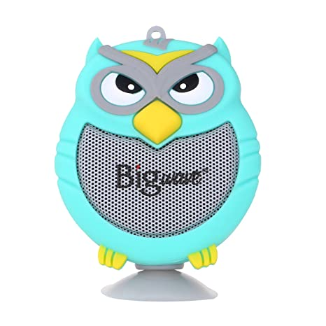 The 8 best owl portable speaker