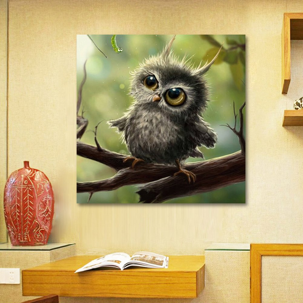 Amazon.com: Whitelotous DIY 5D Diamond Painting Cute Owl Rhinestone ...