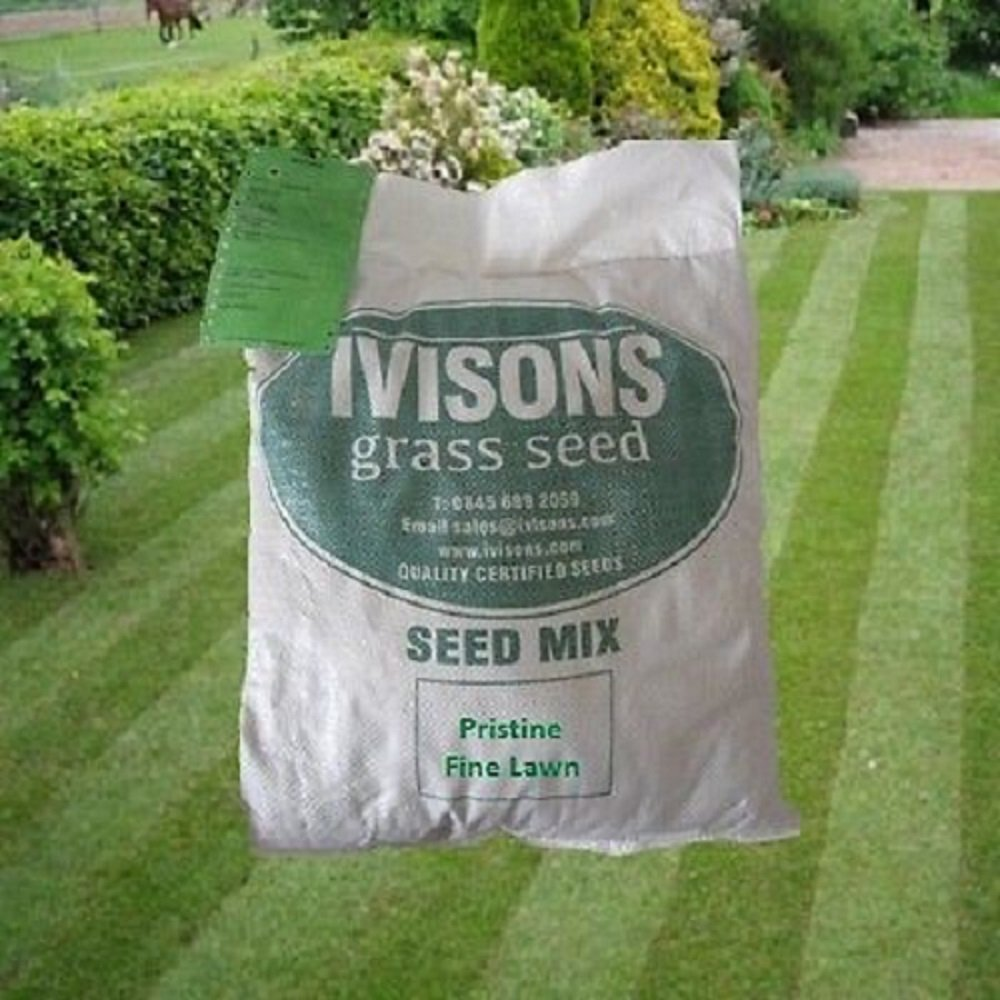 10 Kg Pristine Ornamental Grass Seed Fine Lawn Seed No Rye Grass Ivisons Seeds