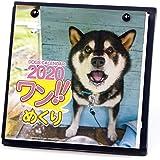 アートプリントジャパン 2020年 ワン!!めくりカレンダー/スタンド付 vol.016 1000109225