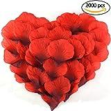cnomg たっぷり 2000枚 プロポーズ バラ 花びら 造花 薔薇の造花 結婚式 誕生日 お祝い 飾り(赤)