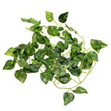 FACILLA® Artificial Scindapsus Vine for Reptiles Lizard Chameleon Habitat Decor Green