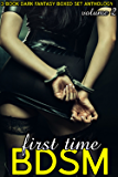 BDSM for the First Time - Volume 2