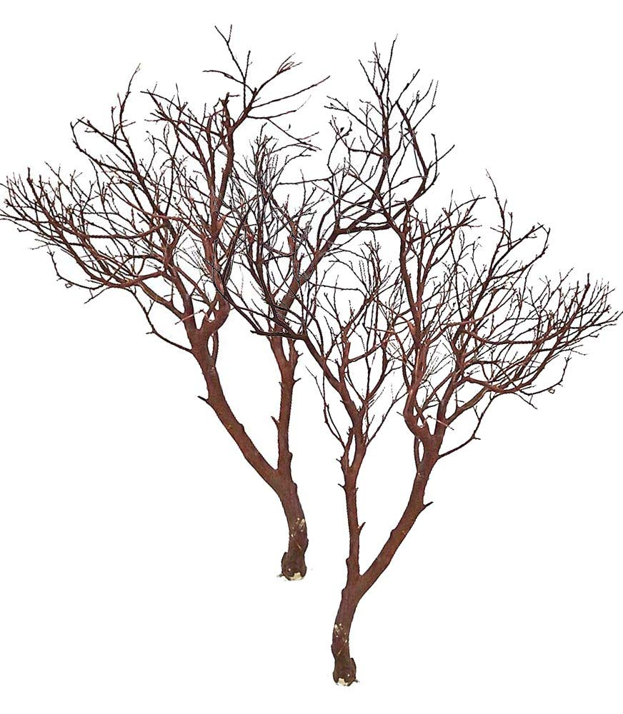 Blooms & Branches Manzanita Branches Case of 2 Pieces (30'')
