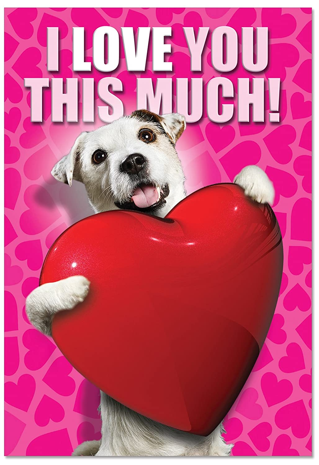 NobleWorks C1648VDG ''Love You This Much Dog'' Funny Valentine's Day Unique Greeting Card, 5