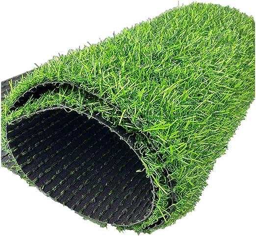 WJ Simulación Césped Césped Artificial Césped Artificial Plástico Césped Jardín de Infancia Al Aire Libre Decoración de la Boda Encriptación Verde Alfombra (Size : 2 * 5m): Amazon.es: Jardín