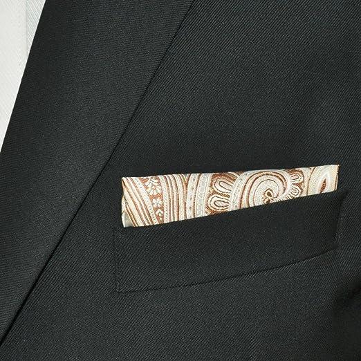 Shlax&Wing Nuevo Hombre Traje De Negocios Seda Pañuelo De Bolsillo Para Marfil Geométrico Floral 12.6