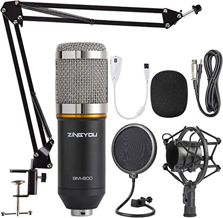 Zingyou Condenser Microphone Bundle Bm 800 Cardioid Professional Pc Mic Kit With Adjustable Mic Suspension Scissor Arm Shock Mount And Pop Filter For Studio Recording Broadcasting Silver Amazon Ca Electronics