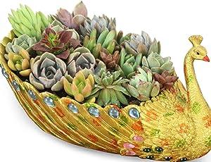Worila Peacock Planter Flower Pot Luxury Succulent Pot Golden Peacock Pot Home and Garden Decorative Planter Container (Single - Golden)