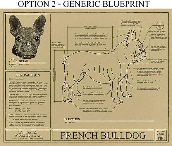 Amazon french bulldog blueprint handmade malvernweather Images