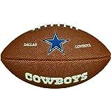 NFL Mini Team Logo Ball