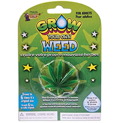 "Forum Novelties Grow Your Own Weed Plant Leaf 7 x 4.5 x 8"": Toys & Games"