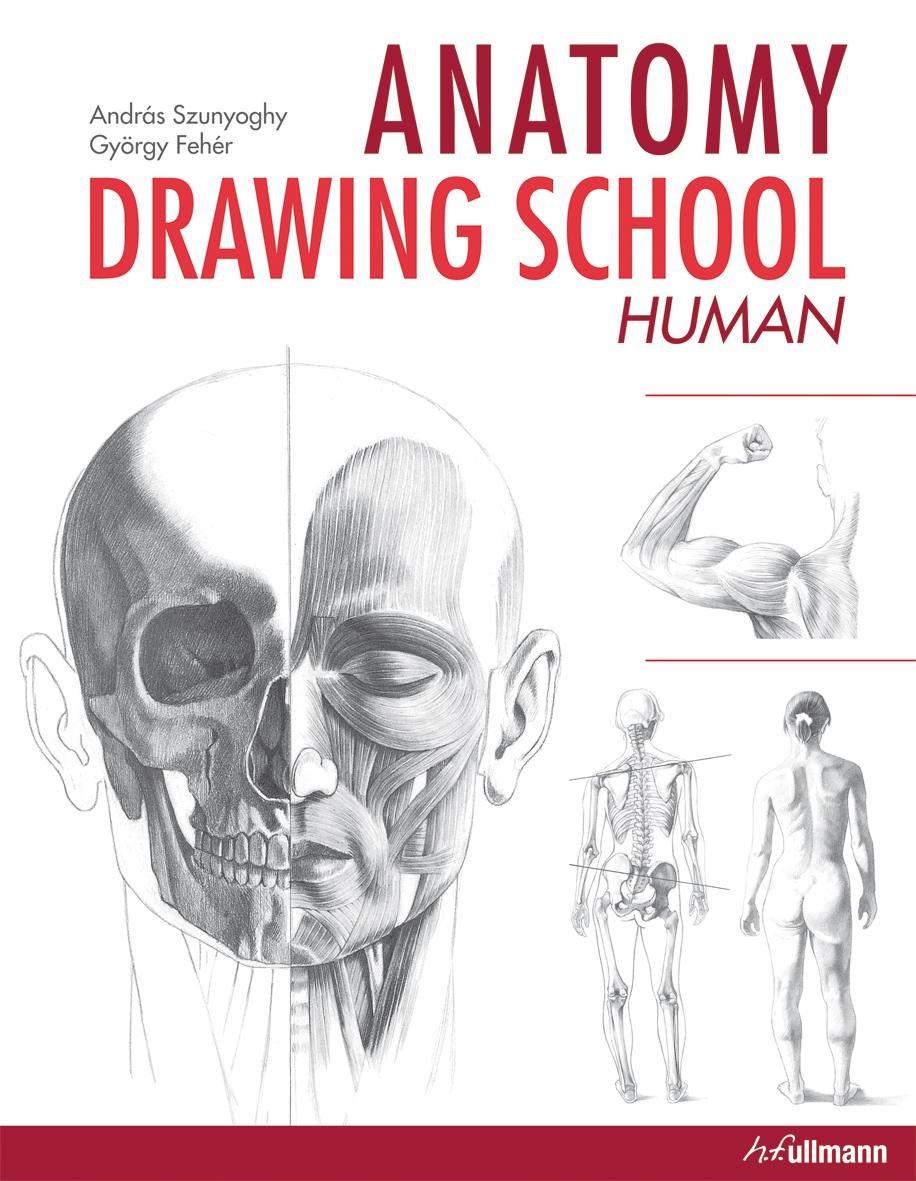 Anatomy Drawing School Human Body Anatomy Drawing School 1
