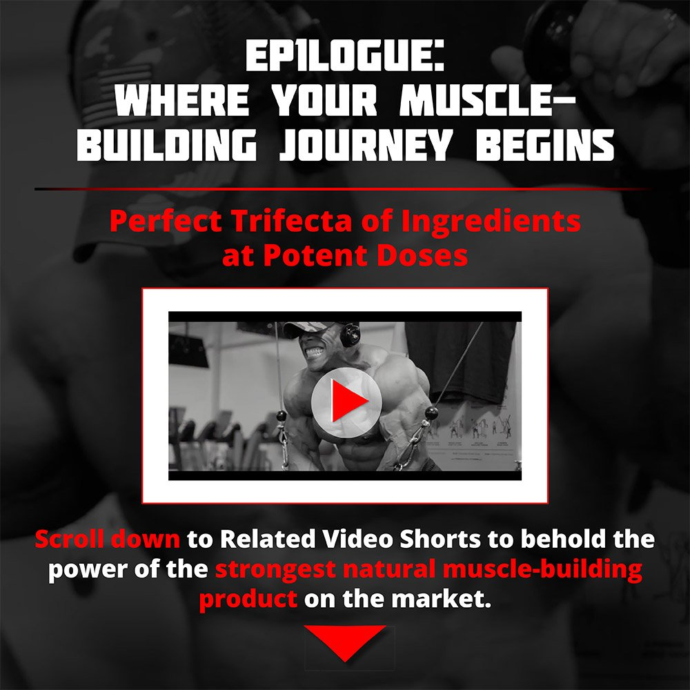 EP1LOGUE Muscle Builder & Epicatechin Supplement w/ Superior Absorption   Lean Muscle Building Formula w/ Nitric Oxide Stimulator VASO-6 & Urolithin B for Natural Body Building by Olympus Labs (Image #5)